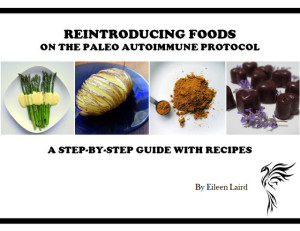 Paleo AIP Reintroduction Guide